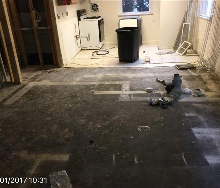 Mold removal After