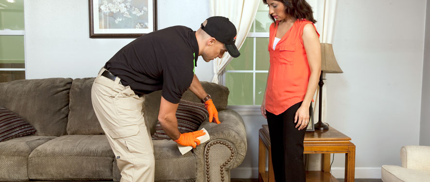 Springboro, OH carpet upholstery cleaning